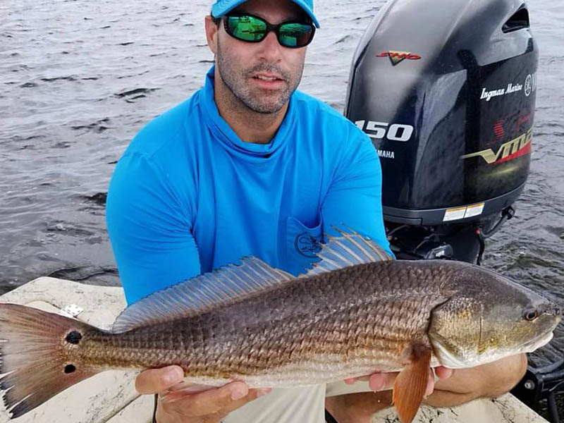 big Redfish caught in Charlotte Harbor, FL